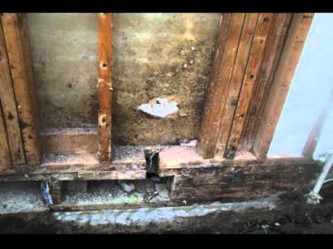Waterproof Versus Water Resistant Exterior Wall Protection - Construction