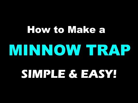 🤠   DIY: How to Make an Minnow Trap out of a Wine Bottle.  Neat trick I learned in South America.