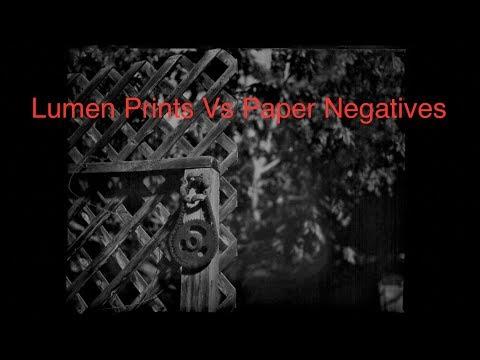 Lumen Prints Vs Paper Negatives