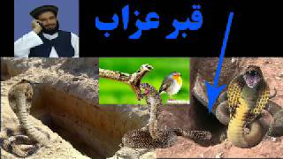 muhammad yasin fahim pashto bayan 2019 دا ویڈیو لایک او شېر کړی