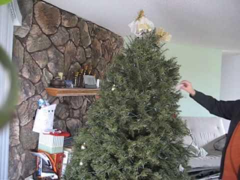 Xmas Tree Clean Up