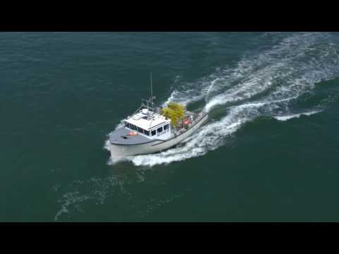 Fishing News Closing Red Snapper