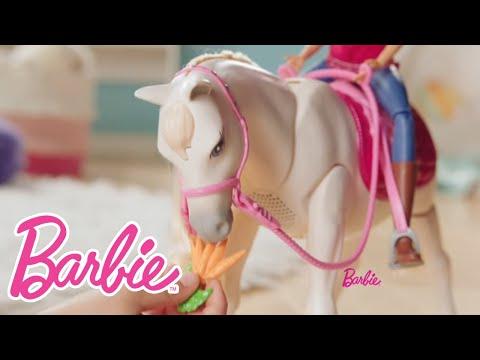 Barbie DreamHorse™ | Barbie