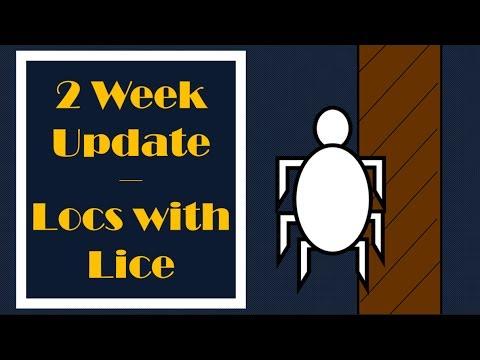 Lice w Locs  * 2 WEEK UPDATE *