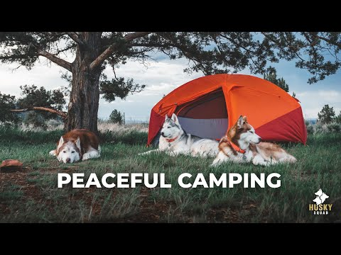 Smith Rock State Park + Husky Camping