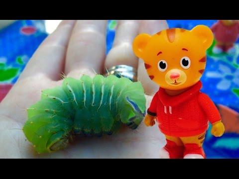 DANIEL TIGER Toy Finds a Big Green CATERPILLAR Camping!