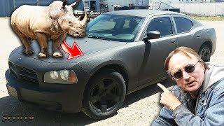 Modified Dodge Charger Police Car - Custom Rhino Liner Paint Job