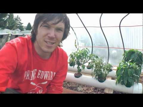 How To Hydroponics - S02E26 2011 Solar Hydroponic System Review