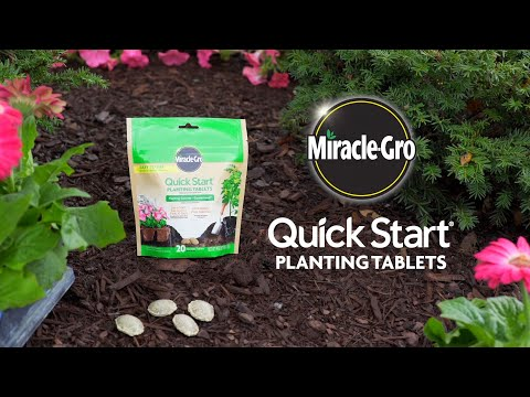 How to Use Miracle-Gro® Quick Start® Planting Tablets
