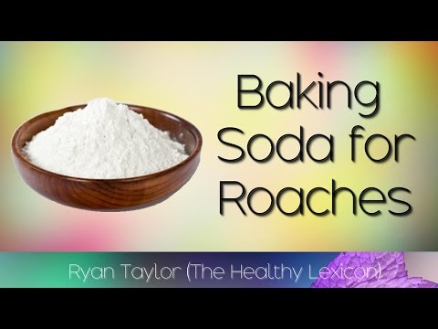 Baking Soda: for Roaches