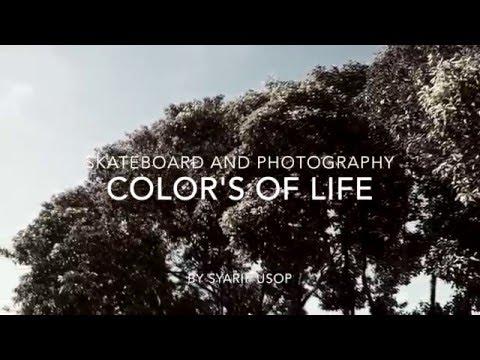 Color's Of Life - Syarif Usop