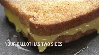 Flip Your Ballot: A Soothing Cheese Voter Guide | Fuller Frontaler on TBS