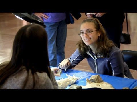 Identification Day: The mysteries of fossils, rocks and artifacts