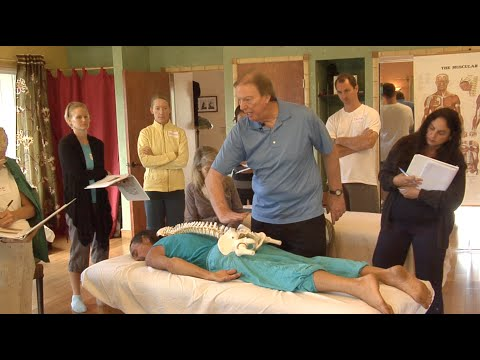DAVID MORIN'S ONLINE MASTER CLASS IN MEDICAL MASSAGE THERAPY