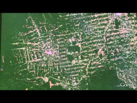 Amazon deforestation animation in Google Earth
