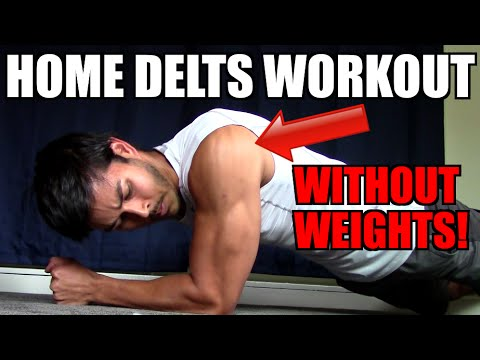 HOME SHOULDER WORKOUT WITH NO WEIGHTS! | HOW TO BUILD BIG DELTS WITH NO EQUIPMENT!