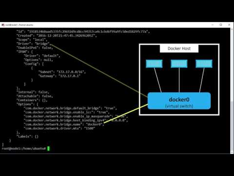 Bridge Networking for Single Host Container Networking
