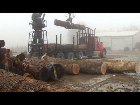 White Oak Log Delivery