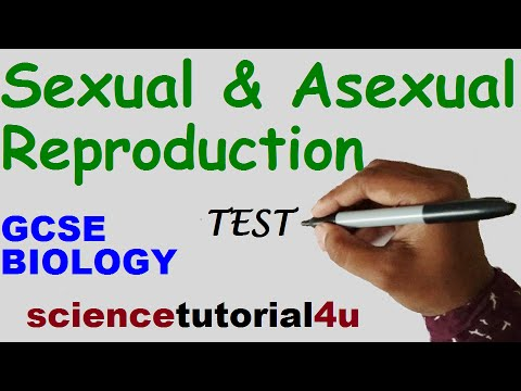 Sexual & Asexual Reproduction. TEST and GCSE Science Revision