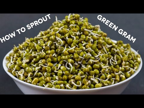 How to sprout green gram (mung/moong) at home