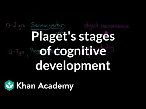 Piaget's stages of cognitive development | Processing the Environment | MCAT | Khan Academy