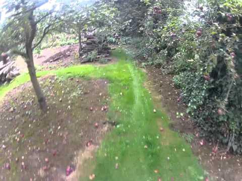 back garden dirt jumps edit