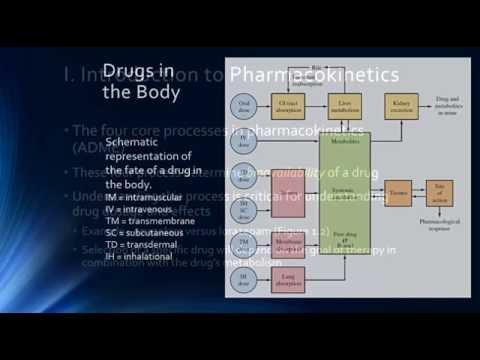 Psychopharmacology & Pharmacokinetics