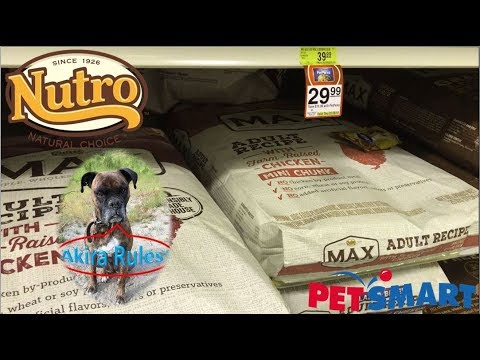 Nutro Max Adult Recipe With Farm Raised Chicken Mini Chunk Review