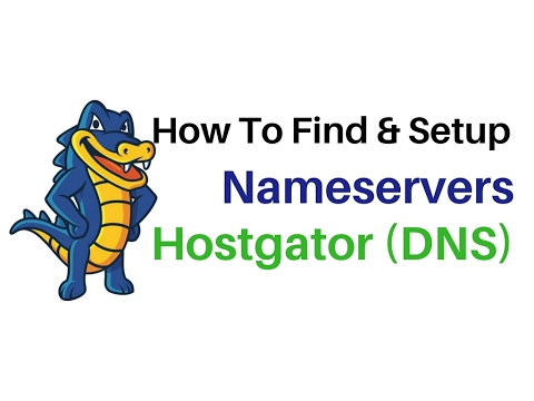 How To Setup (DNS) Hosting Domain Name Servers - Hostgator Linux