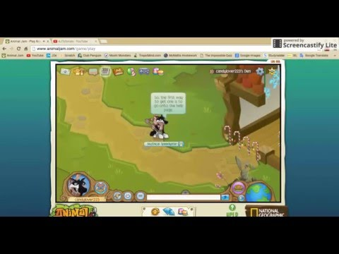 Animal Jam - How to get a headdress (any colour!) for free [1]