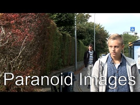 Paranoid Images - A Look Into a Schizophrenic Mind