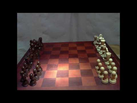 Greetings Emperor!- Chess Stop Motion 3