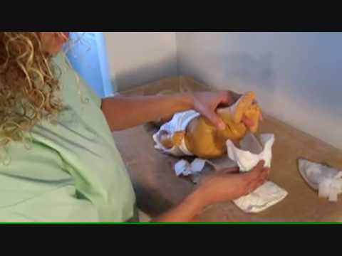 How to Change a Baby's Diaper - Newborn Care Tips