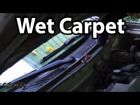 How To Fix Carpet Damage From Leaking AC System