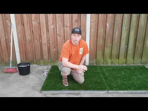 STOP YOUR DOG FROM PEEING ON CONCRETE | ManMade Kennels Europe AMSTERDAM | XXL PITBULL BREEDERS