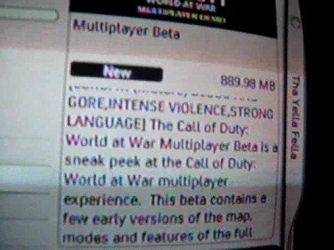 Free Call Of Duty 5 Beta Keys! COD 5 World At War