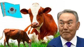 Казахстаном управляет пахан, а не президент. Токаеву надо отправить Назарбаева на пенсию / БАСЕ