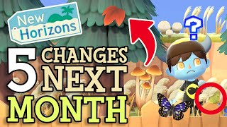 Animal Crossing New Horizons: 5 CHANGES & NEW ITEMS in NOVEMBER (Fall Update & Tips You Should Know)
