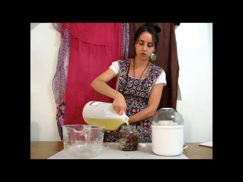 Making *Herbal Oils* Using a Yogurt Maker