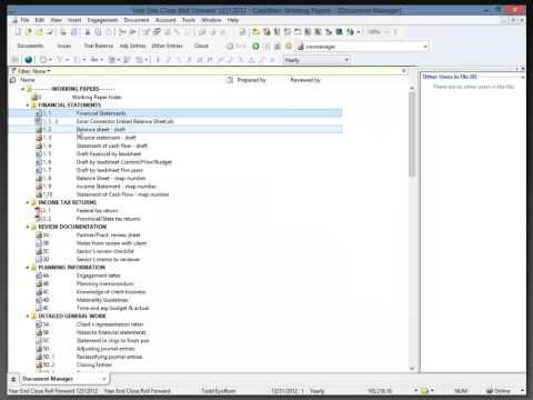 Working Papers - Roll Forward Settings
