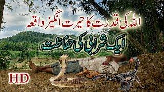 ISLAMI WAQIAT | AIK SHARABI ALLAH KA  WALI BAN  GAYA | ALLAH KI QUDRAT | WALI ISLAM  | ISLAM | ALLAH