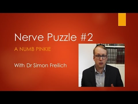 Nerve Puzzle  2 -A numb pinkie - The Neurophysiology assessment of Cubital Tunnel Syndrome