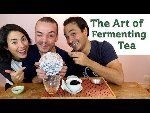 The Art of Fermenting Tea