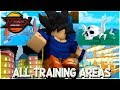 *NEW DIMENSIONS UPDATE* NOOB TO PRO! ALL TRAINING AREAS IN ANIME FIGHTING SIMULATOR ROBLOX
