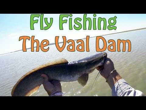 Vaal Dam Fly Fishing For Moggel & Barbel | Fish The Fly