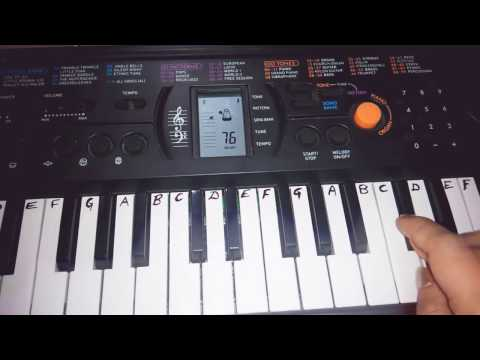 Easy Keyboard Tutorial for Beginners hindi |Sargam|Casio Tutorial| Sa Re Ga Ma Easy Notes