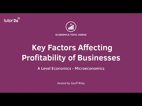 Factors Affecting Business Profitability
