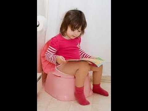 how to train your toddler for potty - how to potty train toddler