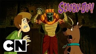Scooby-Doo! in Where's My Mummy? (Preview)