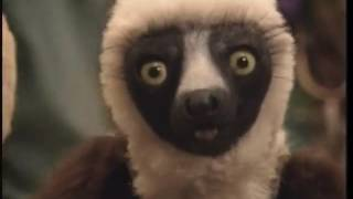 Zoboomafoo: Eye Spy (HQ) Part 2/2